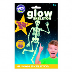 Schelet uman fosforescent, Glowstars Company, 3 ani