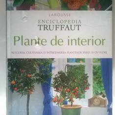 Plante de interior {Enciclopedia Truffaut}
