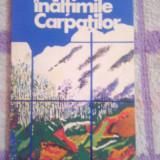 Pe inaltimile Carpatilor-Ovidiu Manitiu - Carte Geografie