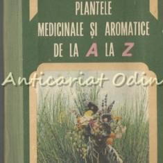 Plantele Medicinale Si Aromatice De La A La Z - Ovidiu Bojor, Mircea Alexan - Carte Medicina alternativa
