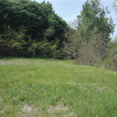Vand teren intravilan vernesti - Teren de vanzare, 1950 mp