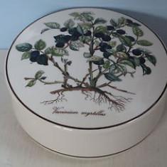 Cutie bijuterii - portelan Luxemburg - Villeroy and Boch - Botanica, Decorative