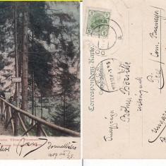 Vatra Dornei (Bucovina, Suceava)-Promenada Ullmann- clasica - Carte Postala Bucovina pana la 1904, Circulata, Printata
