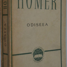 Homer - Odiseea - Carte Informatica