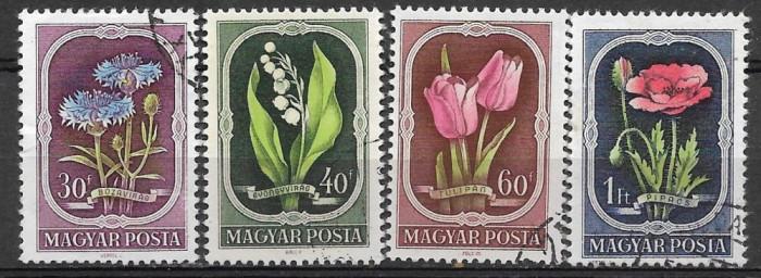 Ungaria 1951 serie deparaiata foto mare