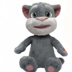 Mini-Prieten vorbaret Tom Dragon-I Toys Dragon-i toys - Instrumente muzicale copii