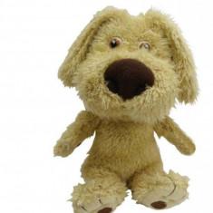 Mini-Prieten vorbaret Ben Dragon-I Toys Dragon-i toys - Instrumente muzicale copii
