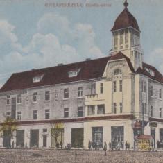 ALBA IULIA PIATA MIHAI VITEAZUL - Carte Postala Transilvania dupa 1918, Necirculata, Printata