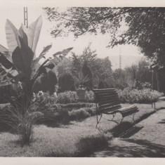 RESITA VEDERE DIN PARC - Carte Postala Banat dupa 1918, Necirculata, Fotografie