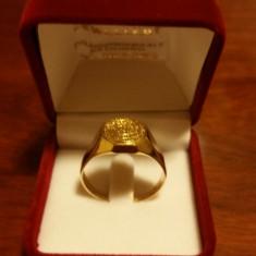 Ghiul barbatesc aur 14 k