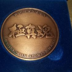 MMD5 - TEMATICA SPORT - KYOKUSHIN SPIRIT AWARD - ROMANIA - Medalii Romania, An: 1982