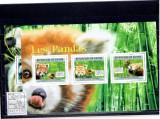 Guinea - Pandas - 2011, Fauna, Africa