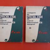 CULEGERE DE PROBLEME DE CALCUL DIFERENTIAL SI INTEGRAL vol 2 si 3 C.Bucur - Carte Matematica