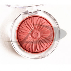 Clinique Blush 01 gingerpop