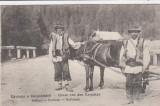 SALUTARI  DIN  CARPATI  TIP DE RUTENI DIN CARPATI   CIRCULATA  1916, Printata