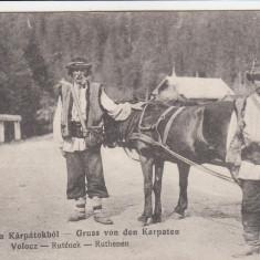 SALUTARI DIN CARPATI TIP DE RUTENI DIN CARPATI CIRCULATA 1916 - Carte postala tematica, Printata