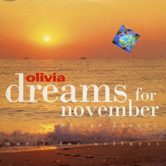 Adrian Enescu – Dreams For November (Music For Wellness) (1 CD) - Muzica Ambientala Altele