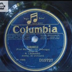 N Leonard disc patefon gramofon v foto!, Alte tipuri suport muzica