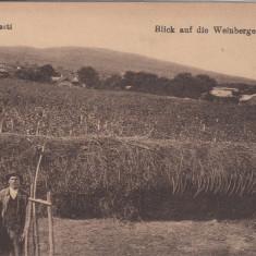 ODOBESTI VEDERE GENERALA A VIILOR - Carte Postala Moldova dupa 1918, Circulata, Printata