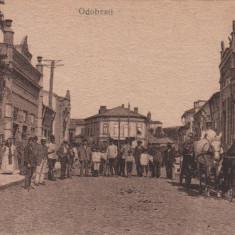 ODOBESTI PIATA FRIZERIA ELEGANTA TRASURA ANIMATA - Carte Postala Moldova dupa 1918, Necirculata, Printata, Focsani