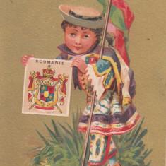 ROMANIA STEMA - Carte postala tematica, Necirculata, Printata