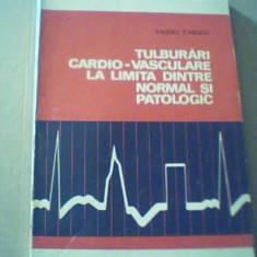 Valeriu Ionescu -TULBURARI CARDIO-VASCULARE LA LIMITA DINTRE NORMAL SI PATOLOGIC - Carte Cardiologie