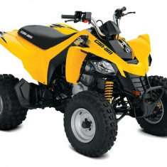 Can-Am DS 250 '17 - Quad