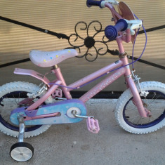 Disney Princess Roz bicicleta copii 14