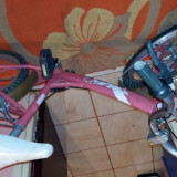 Ieftin - Bicicleta copii, 19.5 inch, 22 inch, Numar viteze: 1