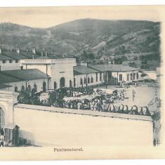 3805 - Litho, Valcea, OCNELE-MARI, Penitentiary - old postcard - unused - Carte Postala Oltenia pana la 1904, Necirculata, Printata