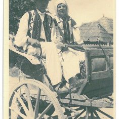 3822 - Gorj, ETHNICS - old postcard, real PHOTO - unused - Carte Postala Oltenia dupa 1918, Necirculata, Fotografie