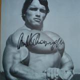 Poza semnata de Arnold Schwarzenegger