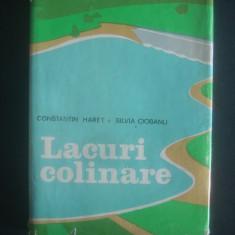 CONSTANTIN HARET - LACURI COLINARE