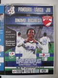 Pandurii Tg.Jiu-Dinamo Bucuresti (17 februarie 2015)