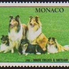 Monaco - Caini - Emisiuni anuale 1981-87