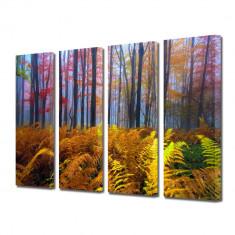 Tablou Multicanvas 4 Piese Veriga in padure - Tablou canvas