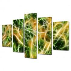 Tablou Multicanvas 5 Piese Curent electric