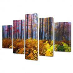 Tablou Multicanvas 5 Piese Veriga in padure - Tablou canvas
