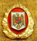 Emblema  coifura ,  cuc, pompieri