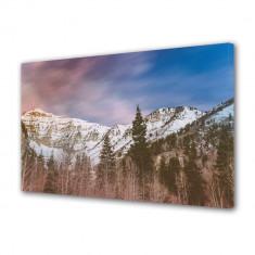 Tablou Canvas Brazi de munte