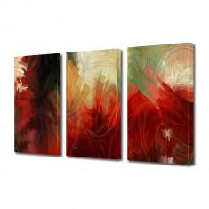 Tablou Multicanvas 3 Piese Pictura abstracta