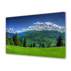 Tablou Canvas Campie de munte