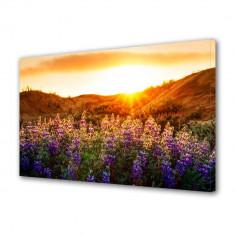 Tablou Canvas Flori violet la munte