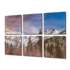 Tablou Multicanvas 6 Piese Brazi de munte - Tablou canvas