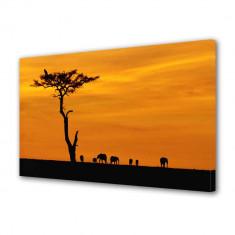 Tablou Canvas Africa