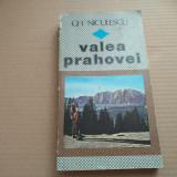 GH. NICULESCU - VALEA PRAHOVEI - Carte Geografie