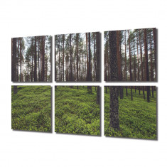 Tablou Multicanvas 6 Piese Padure rara