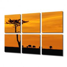 Tablou Multicanvas 6 Piese Africa