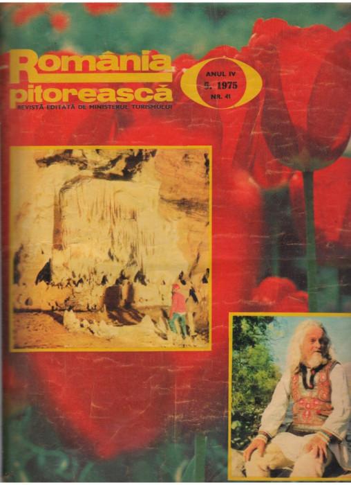 (C7620) REVISTA ROMANIA PITOREASCA, ANUL IV, 5 1975, NR.41