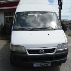 Vand microbuz, An Fabricatie: 2003, Motorina/Diesel, 320000 km, Ducato, 2300 cmc
